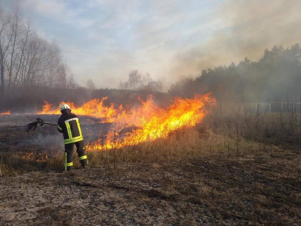 На Дрогобиччині селяни масово палять сухостій: в районі проведуть масштабний рейд з виявлення паліїв